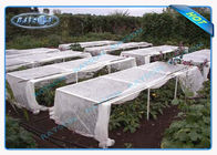 Anti UV PP Spunbond Non Woven White Landscape Fabric for Agriculture Plant Cover