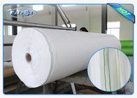 China Super Joint with Maximum Width 45m PP Spunbond Landscape Fabric for Frost Protection factory