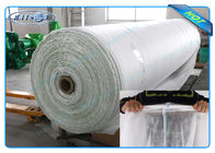 China Biodegradable 100% PP Spunbond Non Woven Landscape Fabric for Garden Plant Protection factory