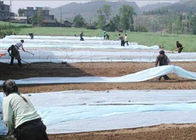 Transparent Spunbond Non Woven Landscape Fabric for Agriculture Plant Cover