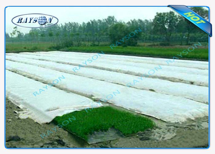 Uv Protection 100 Polypropylene Landscape Fabric Maximun Width 25 6m