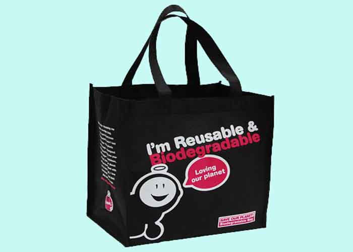 Reusable Spunbond Printed PP Non Woven Bag For Exhibition , Environmental friendly