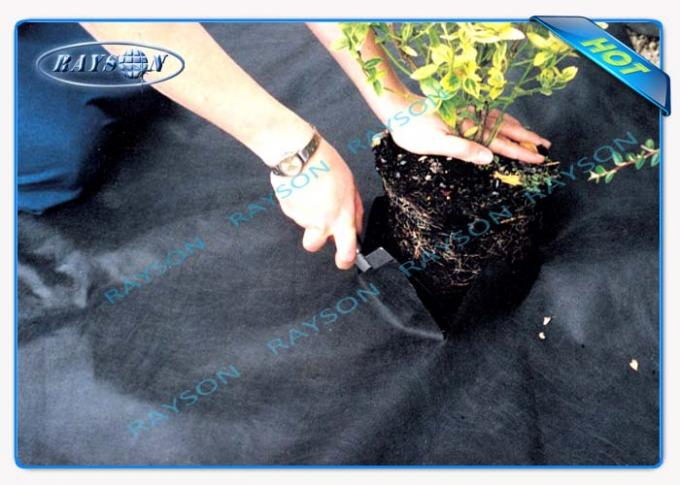 Biodegradable Weed Control Fabric Non Woven Landscape