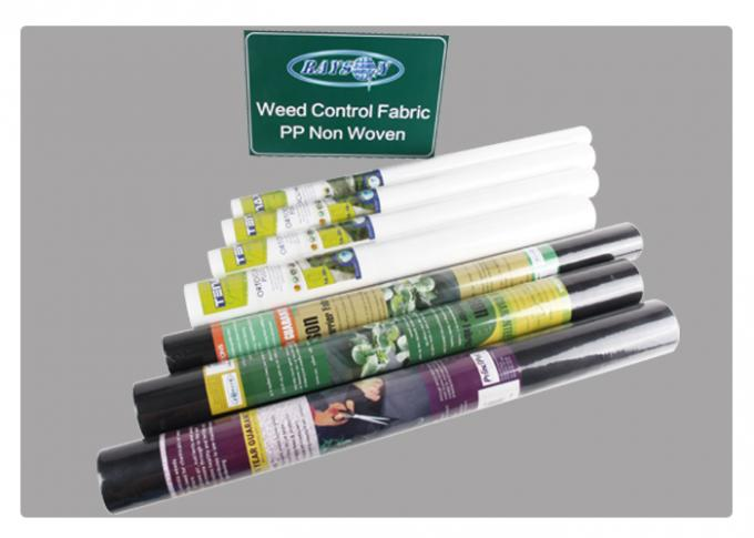 Excellence in Strength and Elogation Black Weed Control Fabric Pro Landscape with Anti-aging