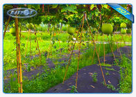 Enviro Vegetable garden weed barrier Anti UV Polypropylene Non Woven Ground Weed Control Fabric
