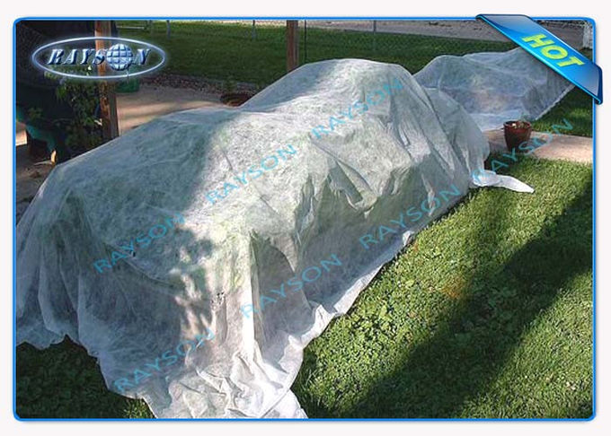 Soft Feeling 100 % PP Spunbond Hydrophilic Non Woven Fabric For Agricultural , Medical , Sanitary