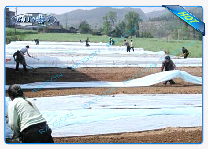 17gram or Customized Thickness Non Woven Landscape Fabric with Sesame Dot